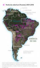 Mapa exibe devastação de milhões de hectares na floresta Amazônica - NG - maio 2019 - 2p.
